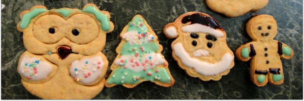 Biscotti alle carote di Natale